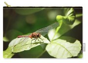 Perched Dragonfly Carry-all Pouch