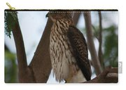 Perched Hawk Carry-all Pouch