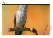 Perched Hummingbird Carry-all Pouch
