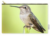 Perched Hummingbird Vi Carry-all Pouch