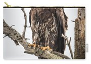 Perched Juvenile Eagle Carry-all Pouch