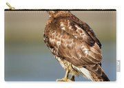 Perched Red Tail Hawk Carry-all Pouch