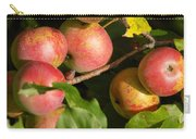 Perfect Apples Carry-all Pouch