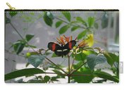 Perfect Set - Butterfly Carry-all Pouch