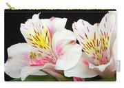 Peruvian Lilies Colorful Botanical Fine Art Print Carry-all Pouch