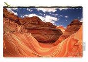 Petrified Dunes Landscape Carry-all Pouch