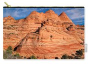 Petrified Sand Dunes Carry-all Pouch