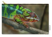 Ambilobe Panther Chameleon Carry-all Pouch