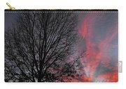 Phoenix Cloud Rising Carry-all Pouch