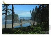 Picturesque Ruby Beach View Carry-all Pouch