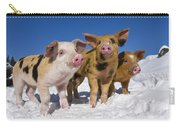 Piglets In Snow Carry-all Pouch