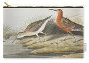 Pigmy Curlew Carry-all Pouch