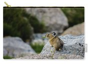 Pika Eating  Carry-all Pouch
