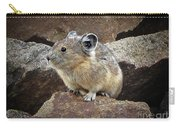 Pika - Weminuche Wilderness - Colorado Carry-all Pouch
