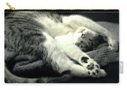 Pilates Cat Carry-all Pouch