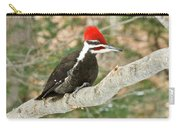 Pileated Woodpecker 6073 Carry-all Pouch