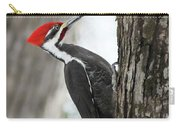Pileated Woodpecker In Spring Carry-all Pouch
