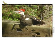 Pileated Woodpecker1 Carry-all Pouch