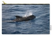 Pilot Whale 6 Carry-all Pouch