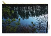 Pine Barren Reflections Carry-all Pouch