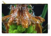 Pine Cone Focus Stack Carry-all Pouch