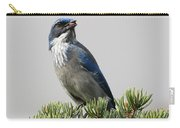 Pine Nut Delight Scrub Jay Carry-all Pouch