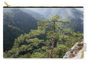Pine Tree On Mountain Landscape Carry-all Pouch
