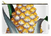 Pineapple, 1789 Carry-all Pouch