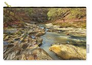 Piney Creek Ravine Revisited 1 Carry-all Pouch