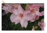 Pink Asiatic Lilies 1 Carry-all Pouch