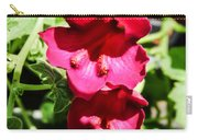 Pink Creeping Gloxinia Carry-all Pouch