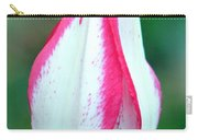 Pink Fringed Carry-all Pouch