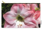 Pink Hippeastrum 02 Carry-all Pouch