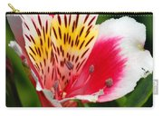 Pink Peruvian Lily 1 Carry-all Pouch