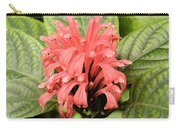 Pink Trendles Carry-all Pouch