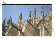 Pinnacles Carry-all Pouch