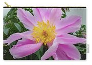 Pinwheel - Bowl Of Beauty Carry-all Pouch