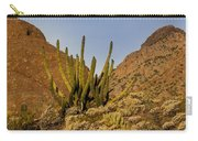 Pipe Organ Cactus At Sunrise Carry-all Pouch
