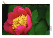Pistil Delight  Carry-all Pouch