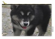 Playful Alusky Puppy Dog Ready To Pounce Carry-all Pouch