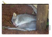 Playing Possum Carry-all Pouch