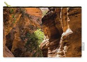 Playing The Slots In Zion Carry-all Pouch