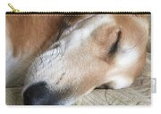 Please Be Quiet. Saluki Carry-all Pouch