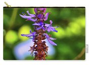Plectranthus Caninus 002 Carry-all Pouch