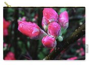 Plum Blossom 1 Carry-all Pouch
