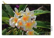 Plumeria Flowers Carry-all Pouch