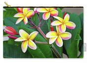 Plumeria Flowers 5 Carry-all Pouch