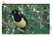 Plush-crested Jay   Cyanocorax Chrysops Carry-all Pouch