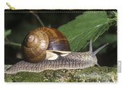 Pneumostome Of A Burgundy Snail Carry-all Pouch