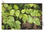 Poison Oak Vine - Toxicodendron Carry-all Pouch